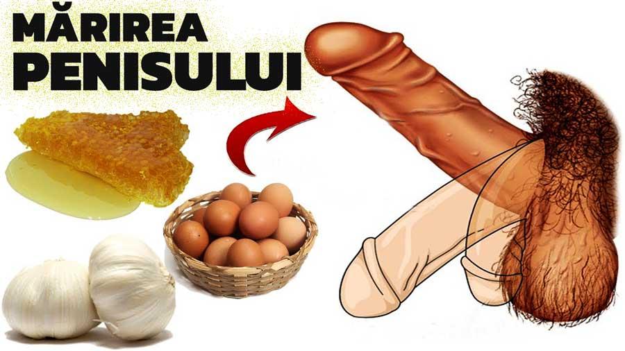 mărirea penisului de a lungul anilor)