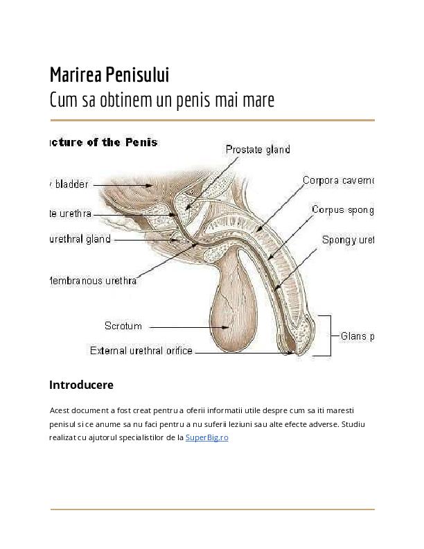 exercitii pentru penis