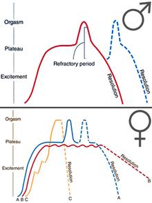 veziculita de erectie